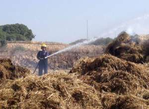 Dingli Farm Fire